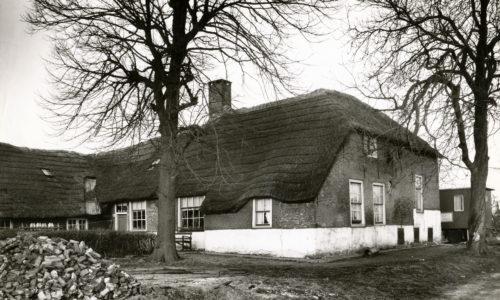 BoerderijArkesteijn1960