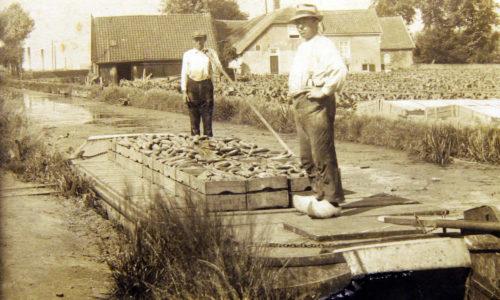 laanvangroenewegen1930